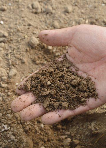soil-766281_1920[1]